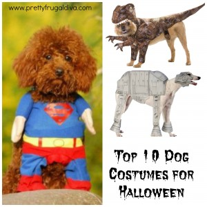 Top 10 Dog Costumes for Halloween